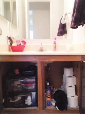 After - Clean Bathroom